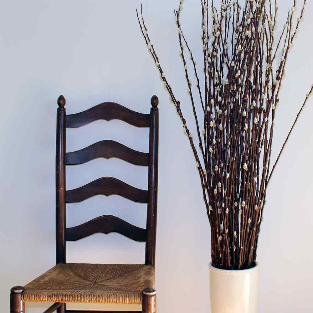 Pussy willow decorative branches for Decoration sticks
