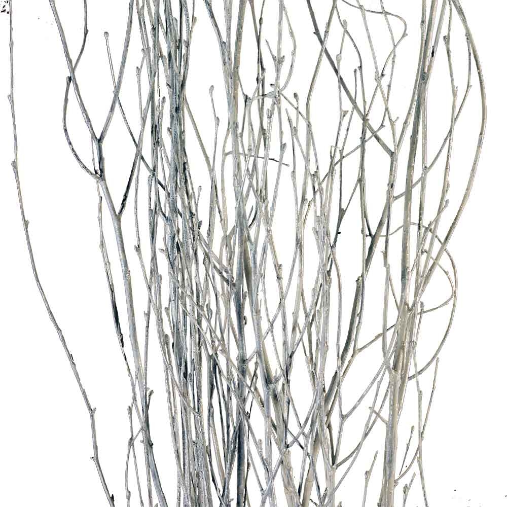 White birch branches decorative branches - White painted tree branches ...