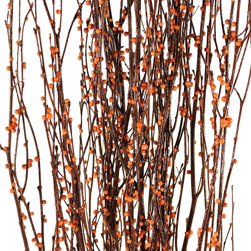 Decorative branches bittersweet birch branches for Decoration sticks