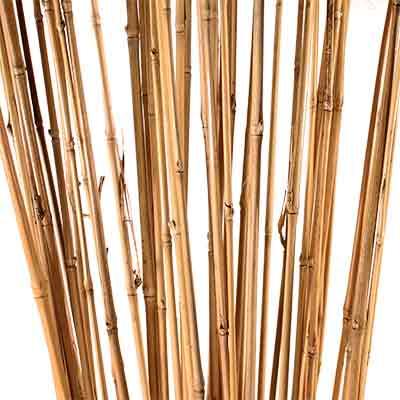 Decorative Branches Bamboo Sticks