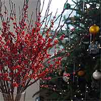 Winterberry Branches, 24-30""