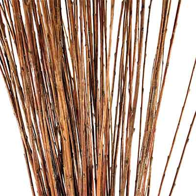 Natural Asian Willow Branches