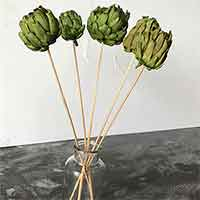 Dried Artichokes, Spring Green, 12 Bunches