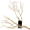 "Manzanita Branches, Sandblasted, 10"" up to 96"""