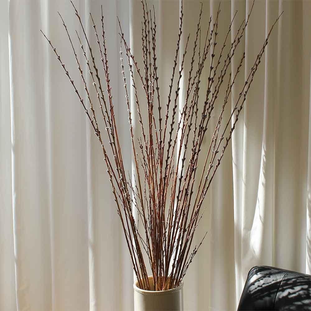 Prairie Willow Branches