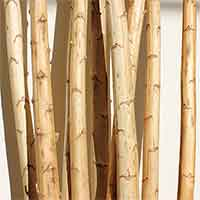 Yucca Poles, 5 up to 12 feet