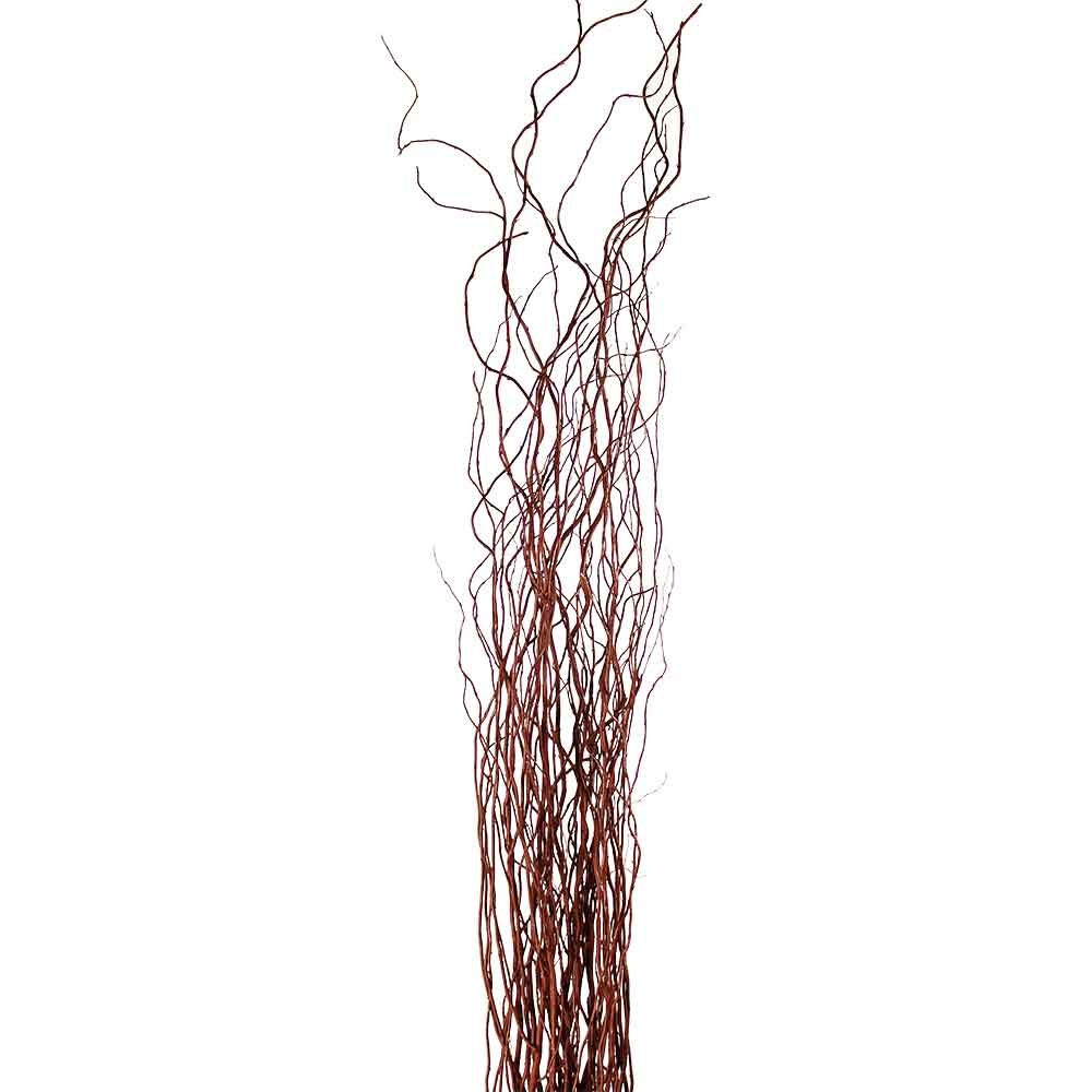 Decorative Branches | Brown Curly Willow Branches