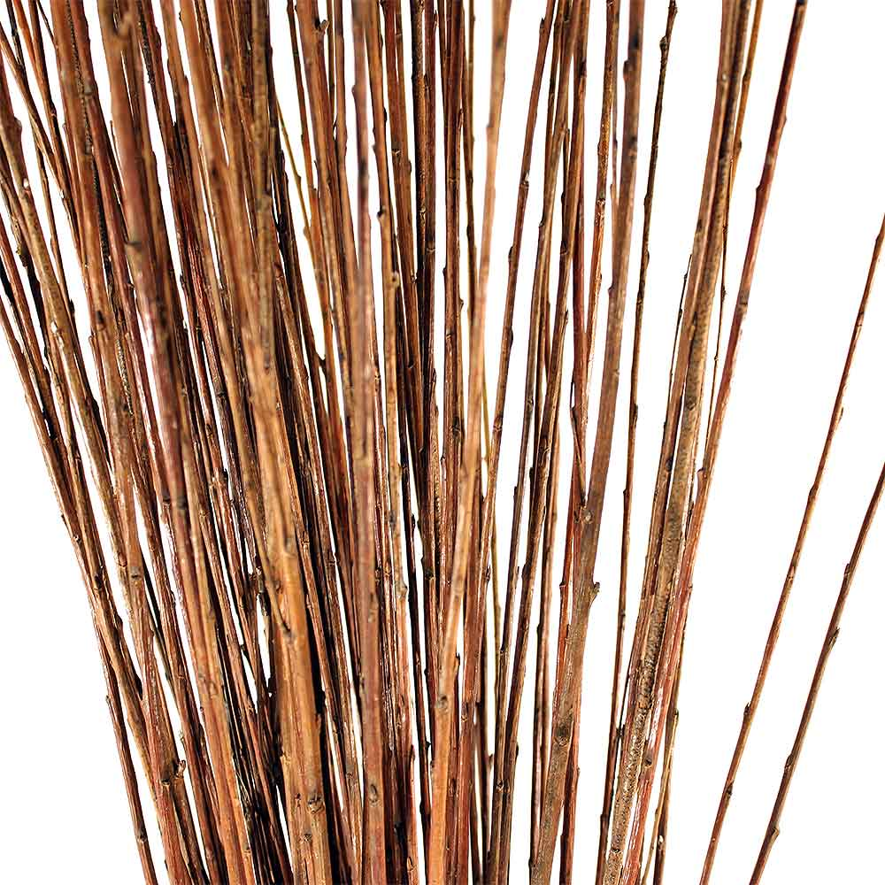 Straight Willow Branches Natural